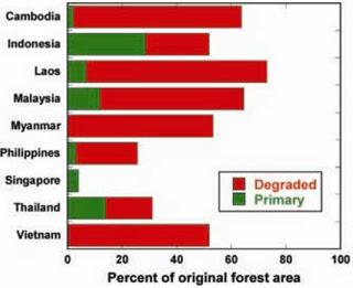 english speech about deforestation
