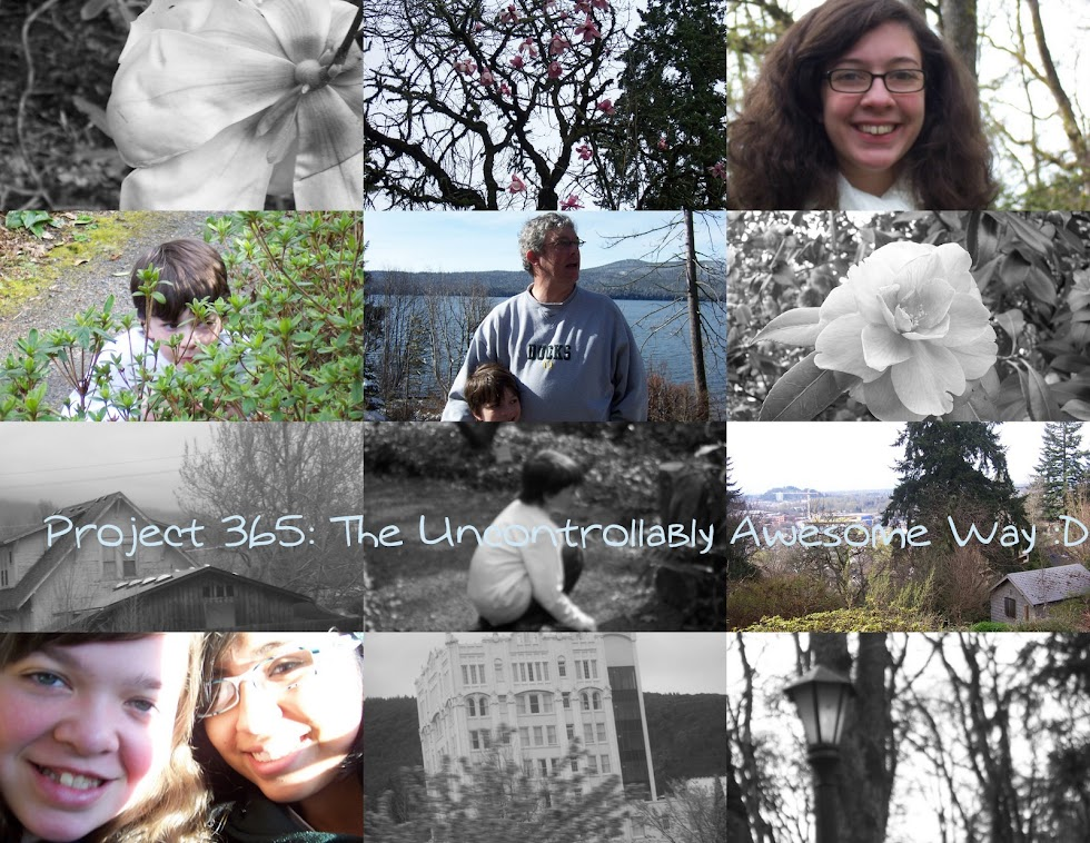Project 365: The Uncontrollably Awesome Way