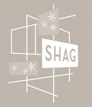 Shag decorating with mid century modern part 2