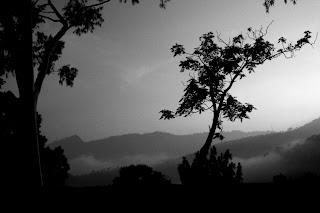 Black & white landscape at Kasauli