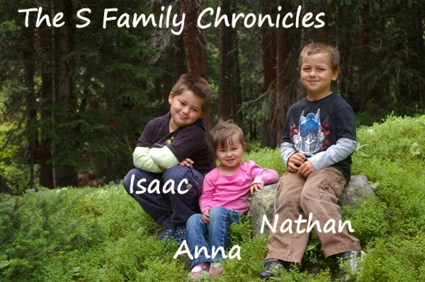 The S Family Chronicles