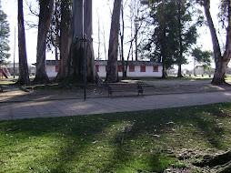 PANIMAVIDA