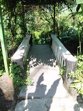 Nydelig liten bro . . . i ettermiddagslys!