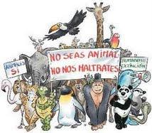¿No seas animal? Más bien Bestia