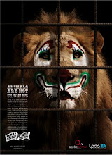 Animals are not clowns (los animales no son payasos)