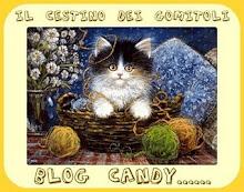 BlogCandy Il Cestino dei Gomitoli