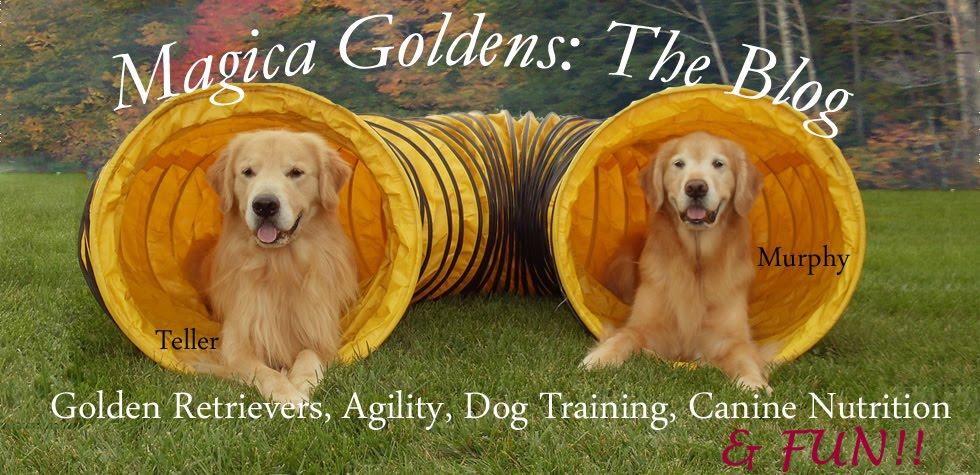 Magica Goldens