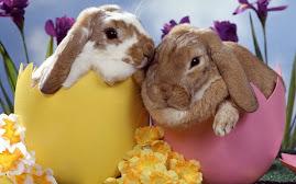 Feliz Páscoa com muito chocolate para vocês.