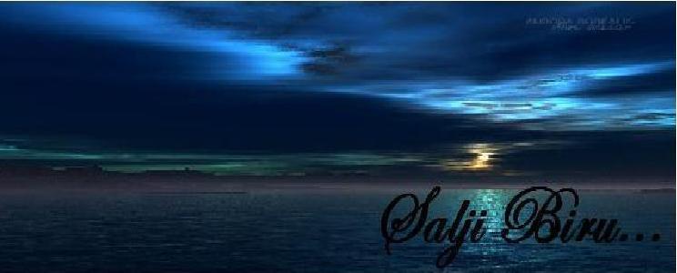 Salji Biru
