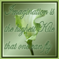 The imagination award