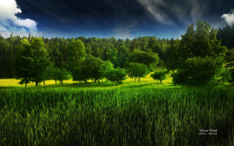 http://4.bp.blogspot.com/_96YMtWrjwXs/TMAwgXZZZEI/AAAAAAAAB2Y/Leb9rqhhfZc/s1600/green_land_by_deinha1974.jpg