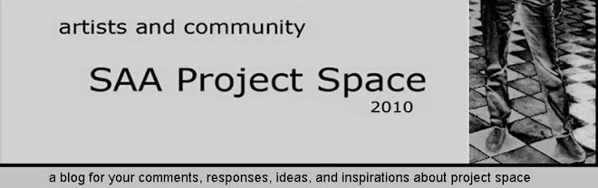 SAA Project Space 2010