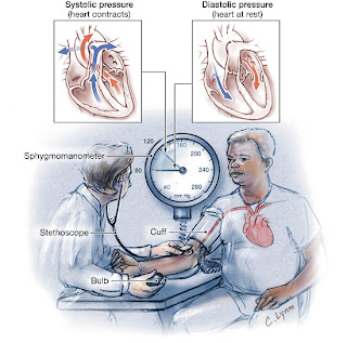 tips to prevent and tread hypertension