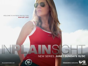 In Plain Sight Season3 Episode7 online free