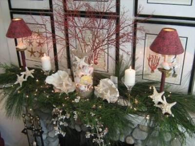 http://4.bp.blogspot.com/_99DWp9eEiDE/Sw9aa2XXuyI/AAAAAAAAAog/RIG1LMw4HWs/s400/Christmas_2008_107+home+goods.jpg