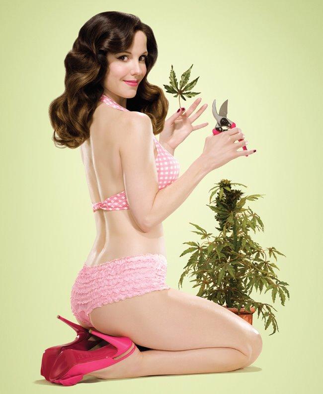 weeds5.jpg