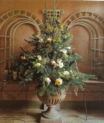 natural, woodland, fresh christmas tree