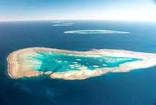 Fitzroy Reef G.B.R.
