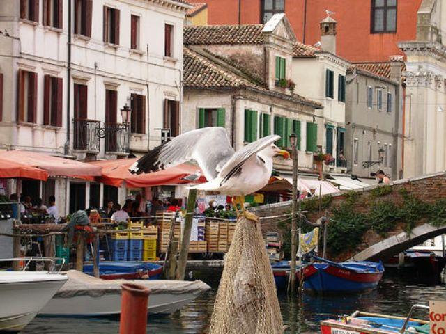 Chioggia, Venecia