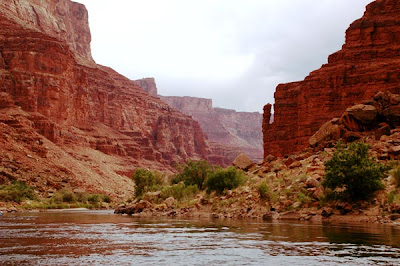 Grand Canyon Colorado River rafting by Jeanne Selep Wilderness River Adventures
