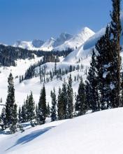 Snijeg, šuma, planine, zima download besplatne slike pozadine za mobitele