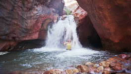 In Shinumo Wash on the Grand Canyon