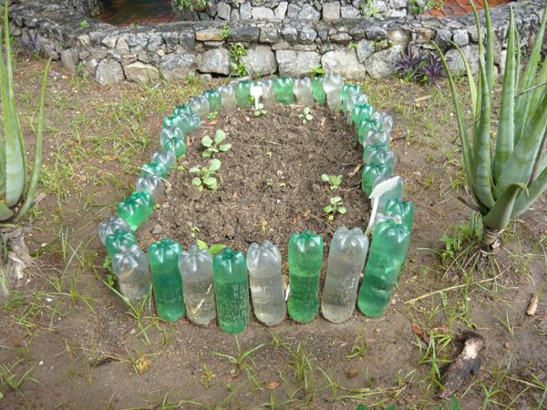Wintergreens - Plastic bottles for gardening ...