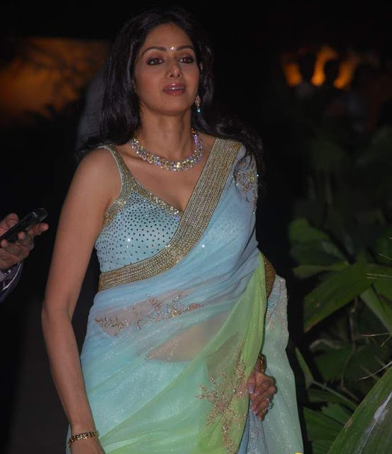 Indian Hot Actress: Sreedevi still hot and cute..