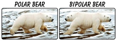 http://4.bp.blogspot.com/_9GHoR-RJLy8/TPB3Q8IWtaI/AAAAAAAAS-I/YFxlCJIRRng/s400/bipolar-bear_bits.jpeg
