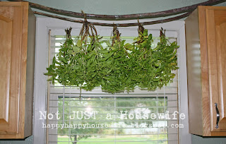 redo Drying herbs