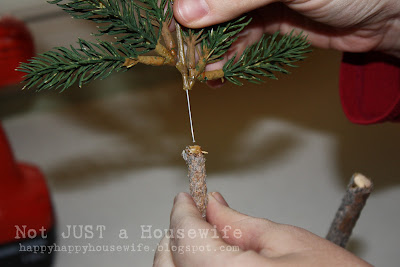 7 Pine Tree Topiary Tutorial