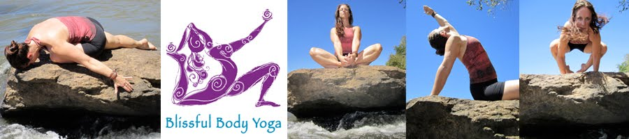 Welcome to the Blissful Body Yoga Blog