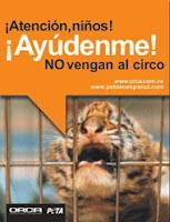 NO AL CIRCO CON ANIMALES