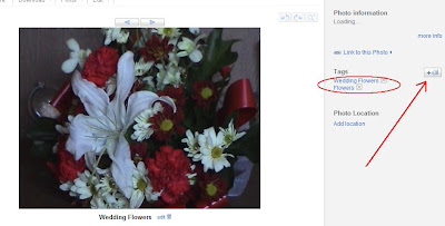 how to use tags to label photos in picasa web albums