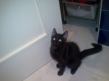 Rafa (Ex-Klorane) - Adoptado pela Tia Natália!!! (Outubro 2009)