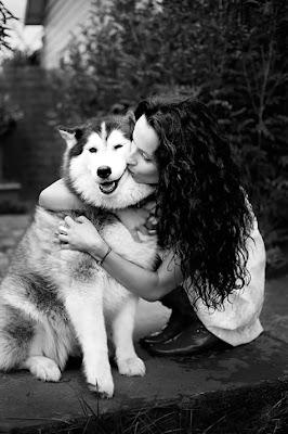 animales Perros+ansiedad+separacion+amor+amantes+animales+1