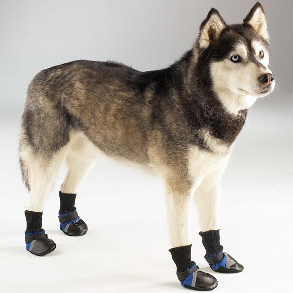 Fiessshta de Dantecito (ahora es un adulto -i-r-resposable) Botitas+para+perros+botas+para+perro+calzado+mascotas+zapatillas+perro+9