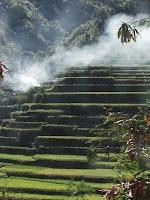 Sagada Rice Terraces Image