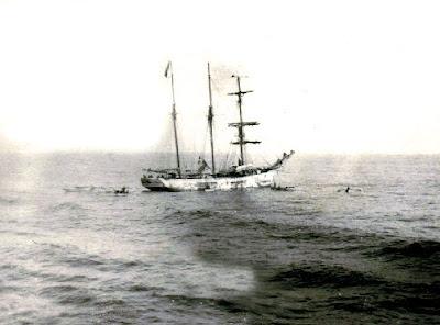 archives maritimes navire h 244 pital fran 231 ois d assise sur les bancs de terre neuve