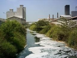 biologi, kesehatan, kimia, pencemaran lingkungan