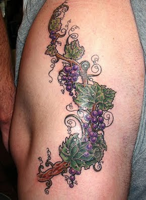 tattoos design grapevine tattoo depicting your sweet and sour nature rh tattoozodiak blogspot com grape vine tattoo meaning grape vine tattoo ideas