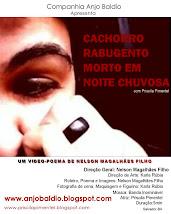 Video-Poema de Nelson Magalhães Filho