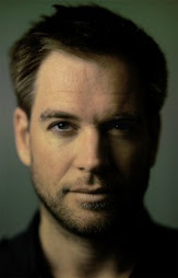 my gorgeously hot ex husband - Michael Weatherly!
