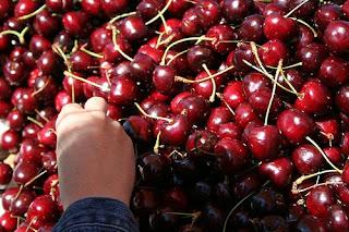 plenty-cherry