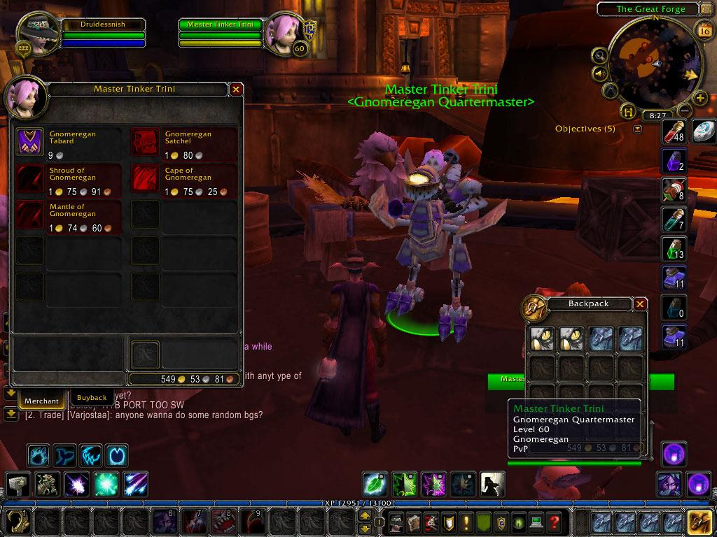 Shadows Wow Guide: Gnomeregan Quartermaster Master Tinker ...
