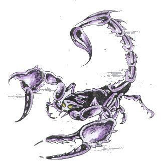 cool Scorpion tattoo pictures
