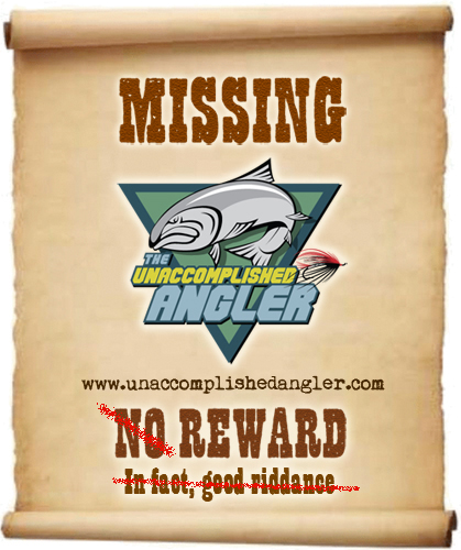 The Naturalists Angle January 2011 – Missing Person Poster Generator