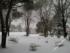 Nevicata pre-natalizia a Gradisca d'Isonzo