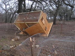 Chicken Coop Blown over