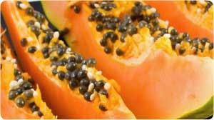 pepaya sumber vitamin C